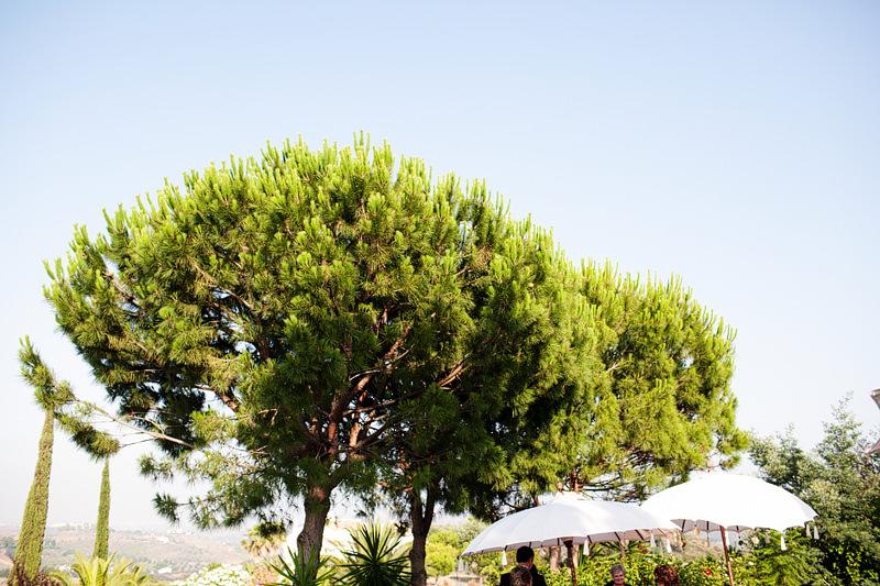 Rustic Wedding Venue Marbella