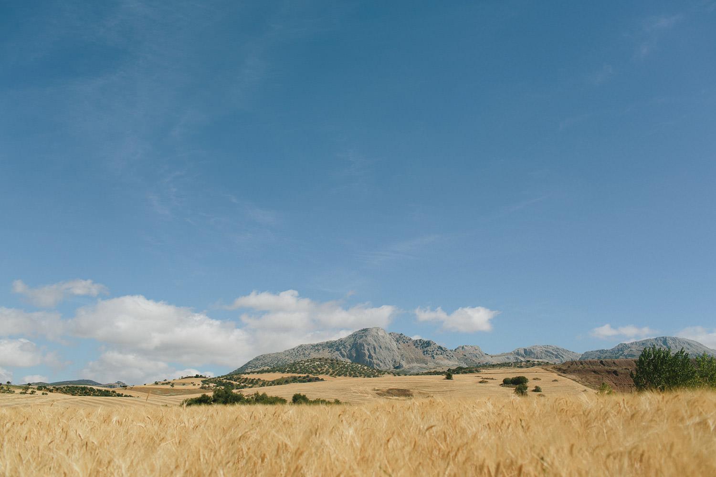 Landscape Andalucia